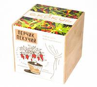 Набор для выращивания Экокуб Жгучий красный перец Код:114-10817368