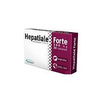 Hepatiale Forte — таблетки для поддержания и восстановления функций печени собак и кошек, VetExpert 30 таблеток