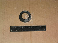 Пыльник пальца рулевого КАМАЗ (малый) (пр-во БРТ) 5320-3414074