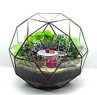 """Флорариум """"Глобус"""" с суккулентами (диаметр -30 см)-эффектный подарок!"""