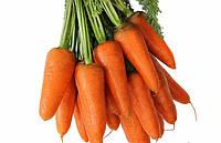 Семена моркови Арго / Argo 100 г