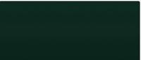 Автокраска Paintera TOPCOAT RM 2K ACRYL LADA 307 Зелёный сад 0,75L