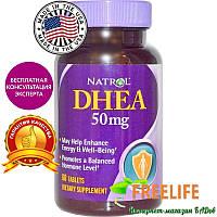 Natrol, DHEA, 50 мг, 60 таблеток, купить, цена, отзывы