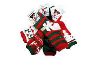 Махровые носки Mr.Pamut/Armando женские (новогодние), размеры 35-41, арт. WP 5502. W-103, фото 1