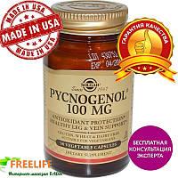 Solgar, Pycnogenol, 100mg, 30 Veg Caps