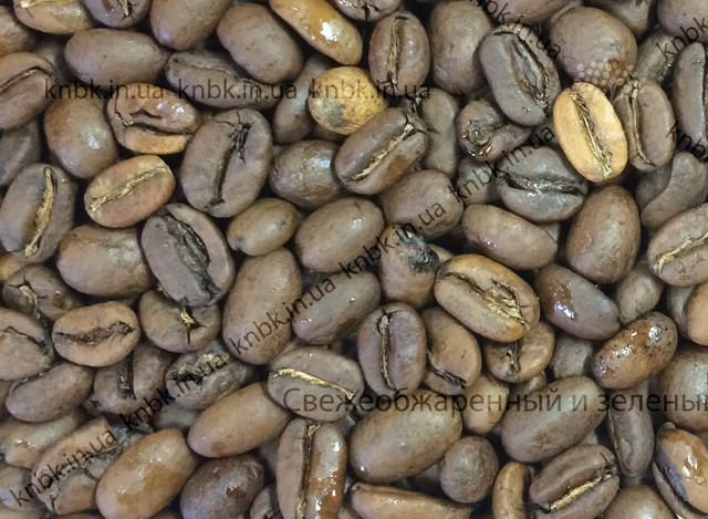 Арабика Эфиопия Джимма (Arabica Ethiopia Djimmah) кофе свежеобжаренный