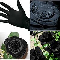 Перчатки нитриловые неопудренные Black - 100 шт./уп
