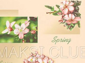 Обои на стену, светлые, влагостойкие, бумажные, Жасмин 8100-01, 0,53*10м