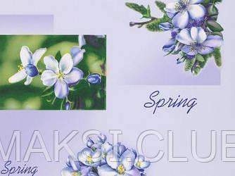 Обои на стену, светлые, влагостойкие, бумажные, Жасмин 8100-07, 0,53*10м