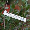 Маркировка растений с помощью термотрансферного принтера: когда это актуально? Какие бирки для растений стоит использовать?