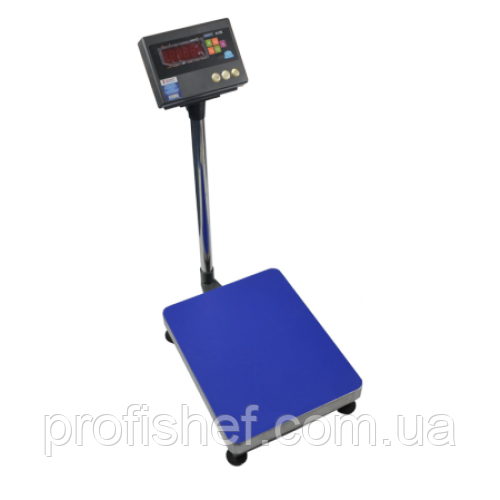 Весы товарные ЗЕВС ВПЕ-200-1 A12E