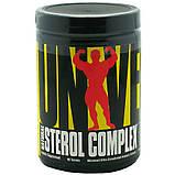 Анаболическая формула NATURAL STEROL COMPLEX 100 таблеток, фото 2