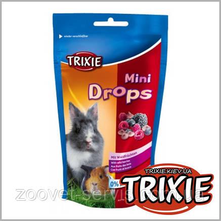 Лакомство для грызунов TRIXIE - Mini DropsВкус: дикие ягоды, фото 2