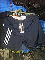 Спортивны шорты мужские Nike копия