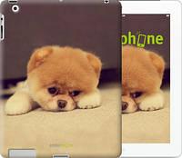 "Чехол на iPad 2/3/4 Boo 2 ""890c-25-532"""