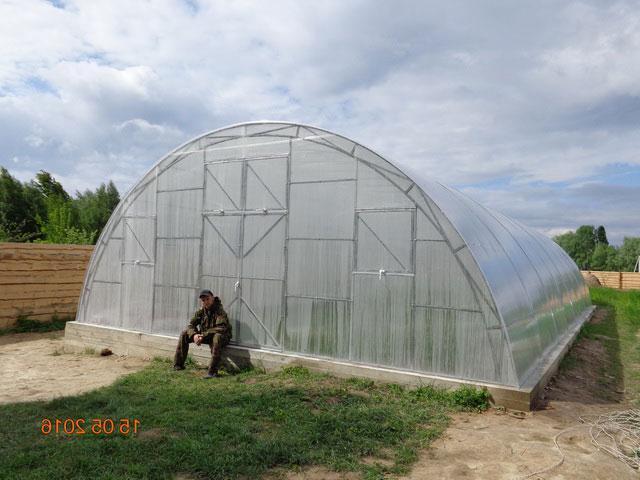 фермерская теплица под поликарбонат