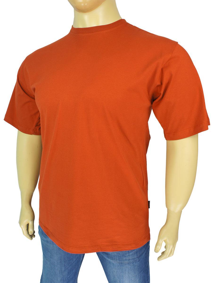 Чоловіча футболка Laperon PRN-4110 B в терракотовому кольорі великого розміру