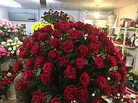 Роза поштучно с доставкой 101 Роза Черри О