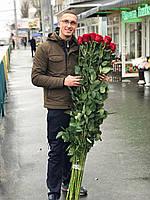Роза высокая 170 сантиметров