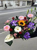 Цветы в прозрачной коробке