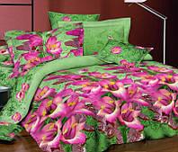 Семейное постельное белье Николь, сатин 100%хлопок