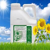 Евро-Ланг, гербицид, 5 л