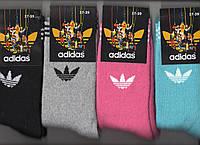 Носки женские махровые х/б Adidas, 37-39 размер, высокие, ассорти, 9954