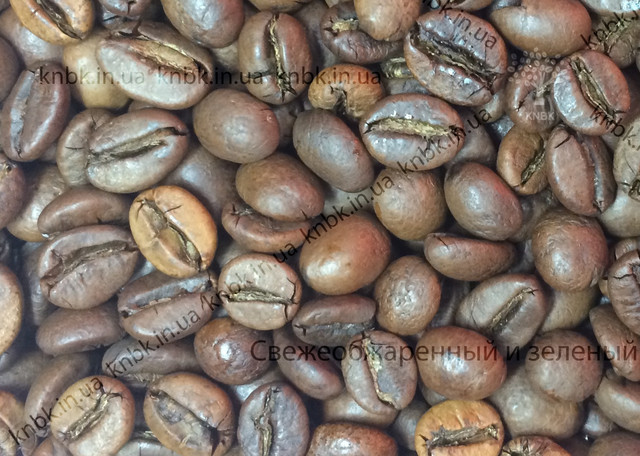 Кофе Вьетнам, фото зерен Вьтетнам робусты в зернах