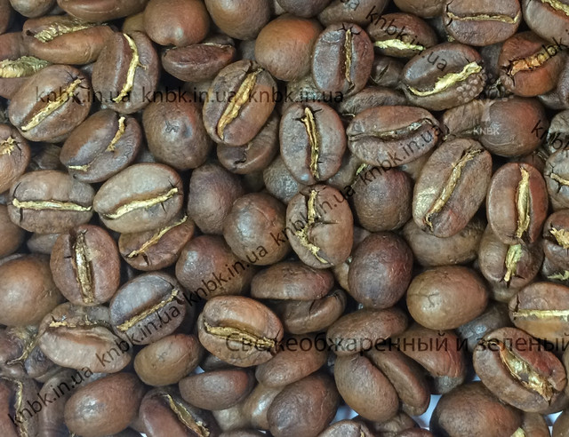 Кофе Индия, кофе Индия Плантейшн как выглядит, фото зерен
