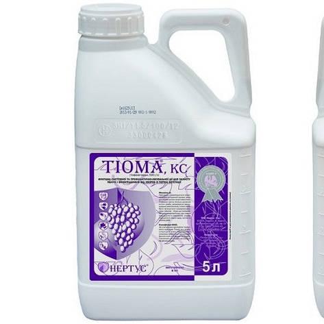 Тиома, фунгицид, 5 л, фото 2