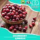 Ароматизатор TPA  Cranberry ( Клюква ) 5 мл, фото 2