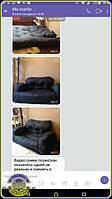 Бескаркасный диван-кровать Хиппо черного цвета - трансформирующаяся мебель для маленьких помещений: фотографии и мнение клиентки о компании UkrBest. Фото в комнате, в форме дивана и кровати, в сложенном и разложенном виде.
