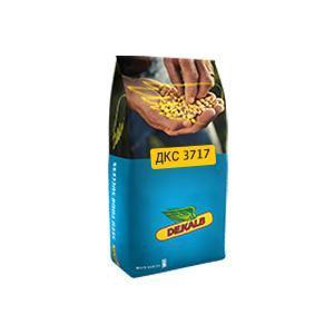 Семена кукурузы Монсанто ДКС 3711 (Monsanto)