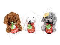 Мягкая игрушка Собака копилка MKX-005116