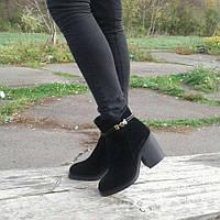 Женские ботинки на каблуке (7283.1) 36, 37, 40