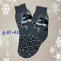 Мужские новогодние носки с собакой Хаски, р. 41-43 из овечьей шерсти