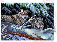 Схема для вышивания бисером Пара волков в зимнем лесу