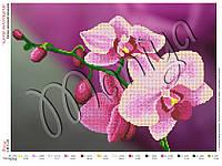 Схема для вышивания бисером Ветка лиловой орхидеи, фото 1
