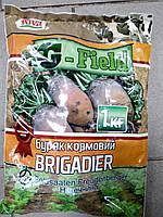 Буряк Бригадир пакет 0.5 кг., фото 1