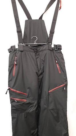 Горнолыжные мужские брюки Cayori, фото 2