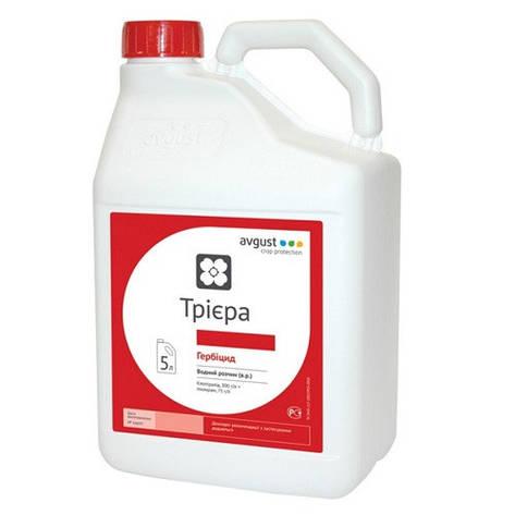 Триера, РК. гербицид , 5 л, фото 2