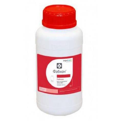 Фабиан, ВДГ, гербицид, 1 кг, фото 2
