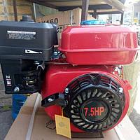 Двигатель бензиновый 19вал 7.5л.с GX-220 HONDA