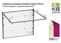 Секционные бытовые гаражные ворота Alutech Trend (панель 40мм)