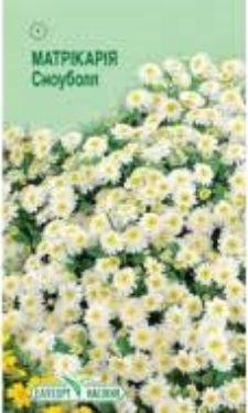 Семена цветов Матрикария Сноуболл 0,1 г