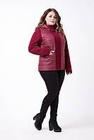 Демисезонная женская куртка больших размеров 48-64