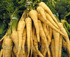 Семена петрушки Арат \ Arat 500 грамм Bejo zaden