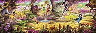 Фотообои фотошпалери Komar 4-416 Disney Fairies Forest Лес фей 368х127 бумажные