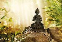 Фотообои фотошпалери Komar 1-610 Buddha Будда National Geographic 184х127 бумажные