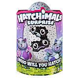 Интерактивная игрушка Hatchimals Spin Master - Двойной сюрприз в яйце близнецы котята, фото 5